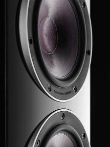 Dali. Rub. 6 speaker