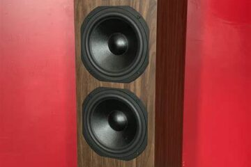 dynavoice-classic-cl-28-speaker-main pic