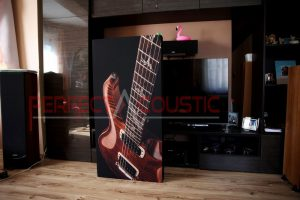 hifi exhibition room acoustics design with acoustic absorbers (3)