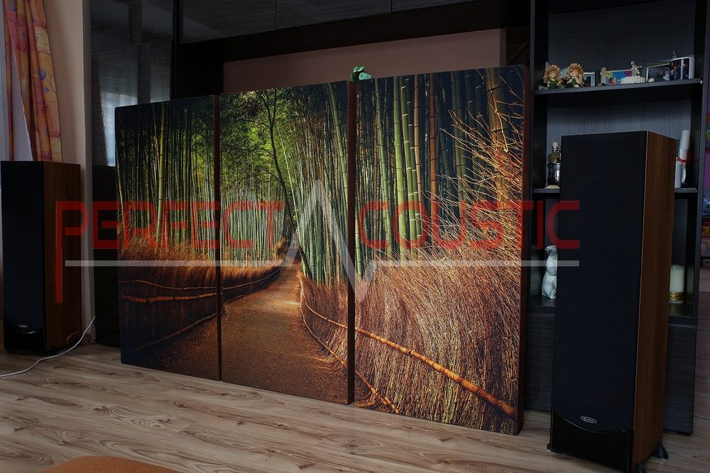 hifi exhibition room acoustics design with acoustic absorbers (4)-Printed acoustic panel