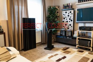 living room with acoustic panels (2)