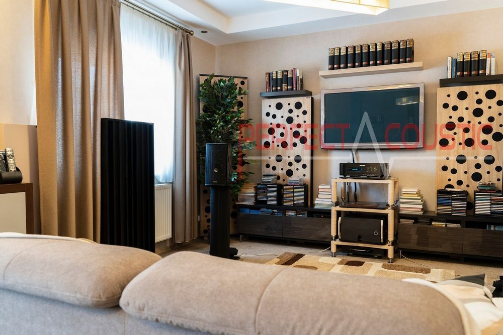 living room with acoustic panels