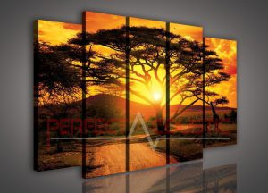 wall photo Decorative acoustic panels